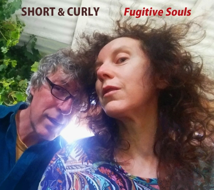 Fugitive Souls cover crop - with text